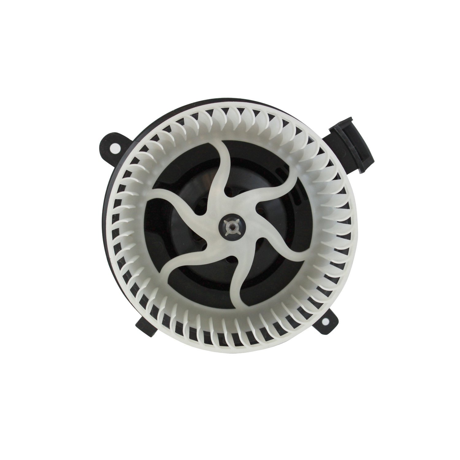 61S9YJsGqfL._SL1500_ tyc 700236 replacement blower assembly, blower motors amazon canada  at eliteediting.co