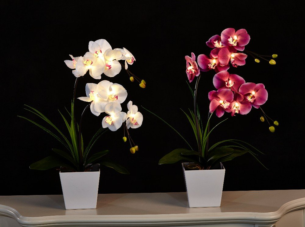 Floristlighting illuminazione led a forma di vaso con orchidea