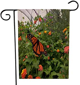 EMMTEEY Holiday Garden Flag Double Sided Burlap Decoration 12.5x18 Inch for Yard Outdoor Decor Garden Flag Monarch Butterfly on Top of Plants The House in Botanical Garden Closeup Shot Shows
