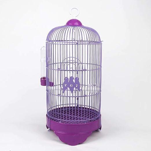 GL-birdcage Jaula de pájaros pequeña - para el pinzón Canario ...