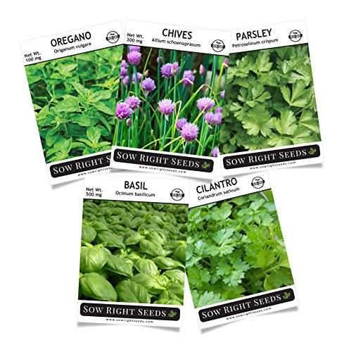 Sow Right Seeds - Herb Garden Seed Collection - Basil, Chives, Cilantro, Oregano, Parsley; All Non GMO Heirloom Seeds with Full Instructions for Planting an Easy to Grow Kitchen Garden