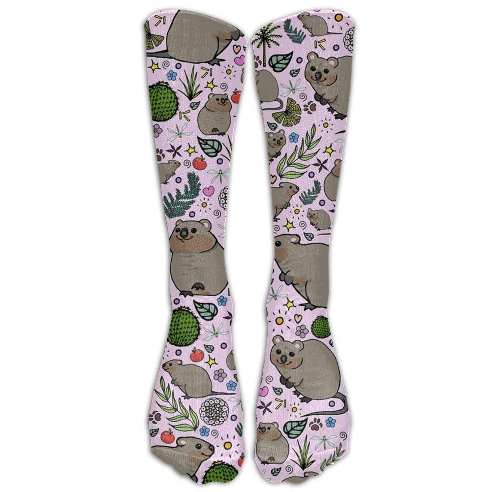 Quokka Party Unisex Compression Socks Durable Athletic Tube Stockings Sport Long Socks One Size