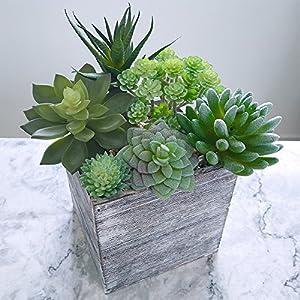 Supla Pack of 6 Assorted Artificial Echeveria Succulent Picks Textured Faux Succulent Pick Agave Cactus in Different Green for Fake Succulent Bouquet Floral Arrangement 3