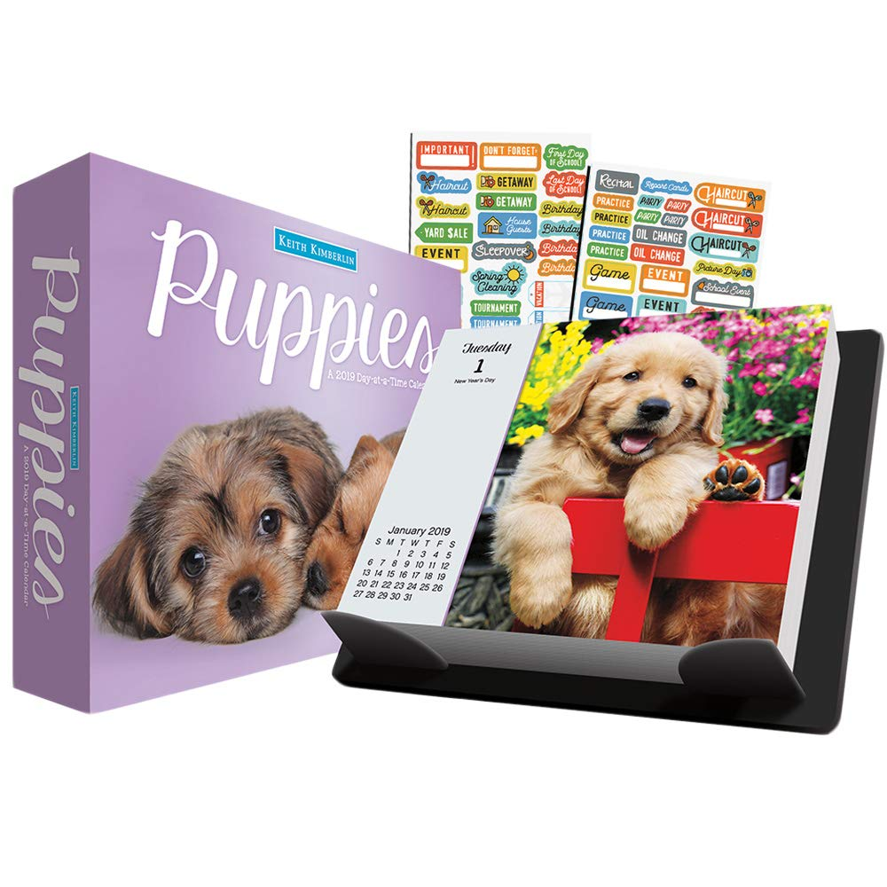 Keith Kimberlin Puppies 2019 Calendar, Box Edition Set - Deluxe 2019 Keith Kimberlin Puppies Day-at-a-Time Calendar with Over 100 Calendar Stickers (Keith Kimberlin Puppies Gifts, Office Supplies)
