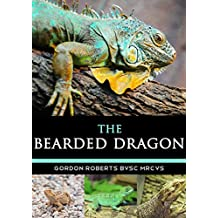 The Bearded Dragon: A vet's guide on how to care for your Bearded Dragon