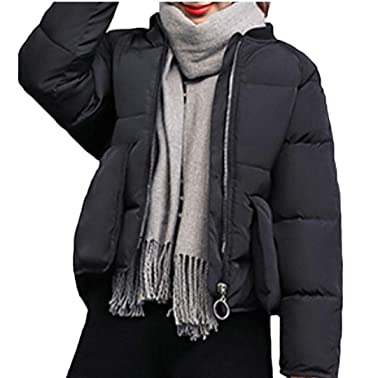 WSPLYSPJY Womens Puffer Jacket Down Coats Fur Hood Down Parka Outwear