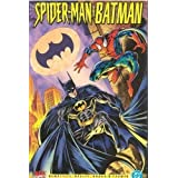 Spider-Man and Batman (Disordered Minds) by J. M DeMatteis (1995-05-03)