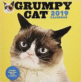 Grumpy Cat Calendar 2019 January Grumpy Cat 2019 Wall Calendar: Grumpy Cat: 9781452159997: Amazon