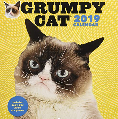 Grumpy Cat 2019 Wall Calendar (Funny Pics Of Cats)