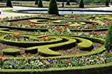 Home Comforts LAMINATED POSTER Hedge Flowers Fountain Versailles Garden Cis Poster 24x16 Adhesive Decal