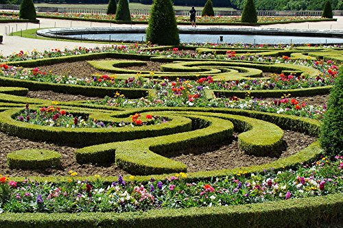 Home Comforts LAMINATED POSTER Hedge Flowers Fountain Versailles Garden Cis Poster 24x16 Adhesive Decal by Home Comforts