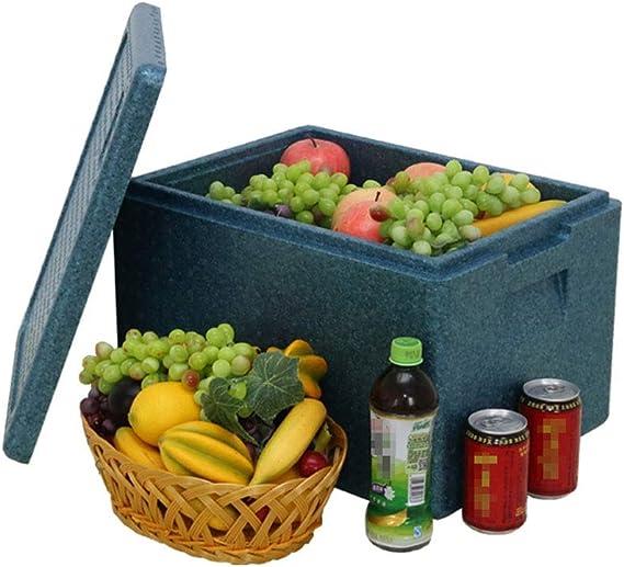 Vobajf Nevera portátil Enfriar Bolsa para picnics Caja para refrigerador para Camping Caja aislada Caja de Almacenamiento Congelador Caja Azul Fresca Bolsos del Almuerzo: Amazon.es: Hogar