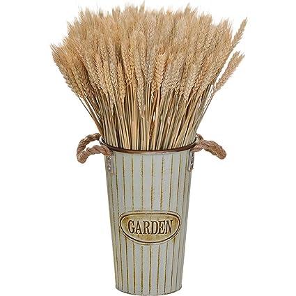 Ramo de flores de espigas de trigo seco natural, arreglo para decoración del