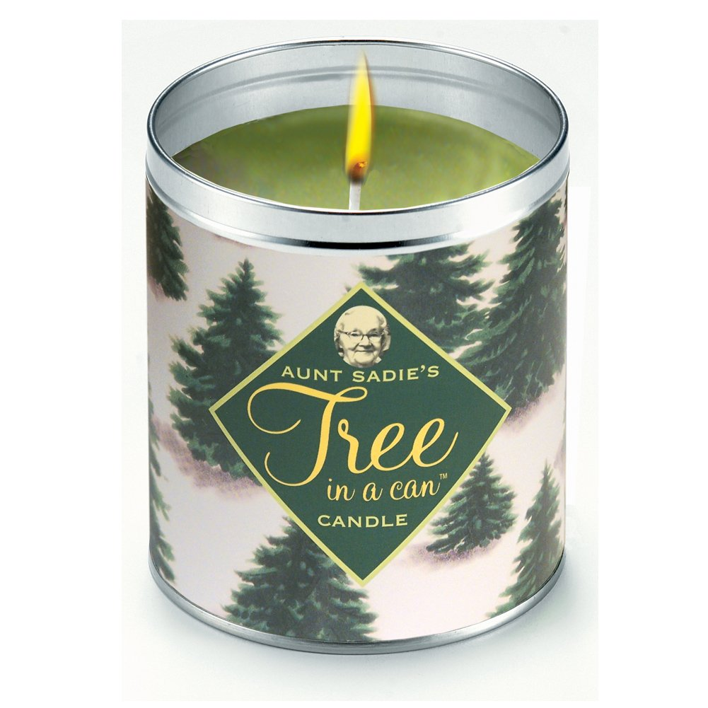 Completely new Amazon.com: Aunt Sadie's Tree In A Can Pine Scented Candle  DA24