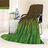Digital Printing Blanket Antique Old Planks American Style Western Rustic Wooden with thick growth of grass Summer Quilt Comforter