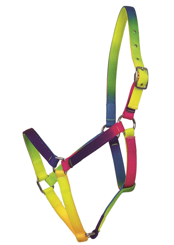 dise/ño de arco/íris Unidades Amesbichler Cabezada para Caballos cabezada para Caballos llamativos Ajustable Cuello de Neon Colores Vivos