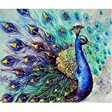 Everydlife 5D DIY Diamond Painting Peacock Embroidery Cross Stitch Home Wall Decor Craft with Full Square Drill 12x16 inches