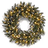 National Tree 30 Inch Glittery Bristle Pine Wreath with Clear Lights (GB1-319-30W)