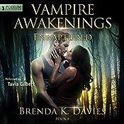 Enraptured: Vampire Awakenings, Book 4 | Brenda K. Davies
