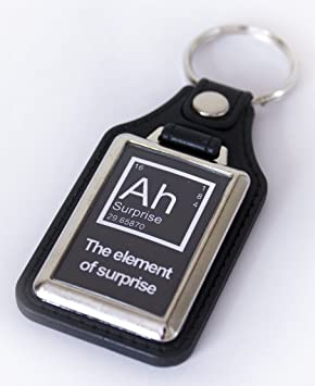 Funny science chemistry periodic table medallion keyring amazon funny science chemistry periodic table medallion keyring urtaz Gallery