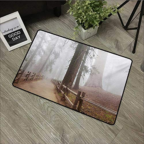 pad W24 x L35 INCH Yosemite,Evergreen Forest and Walkway in Sequoia National Park Foggy Morning Nature Art,Grey Brown Easy to Clean, Easy to fold,Non-Slip Door Mat Carpet