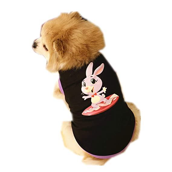 Ropa para Mascotas,Dragon868 Conejo Impreso Chaleco de algodón Cachorro Traje de Perro pequeño: Amazon.es: Ropa y accesorios