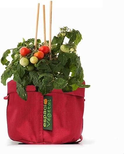 Kit cultivo Tomates Cherry. TÓMATE TU TIEMPO.: Amazon.es: Jardín