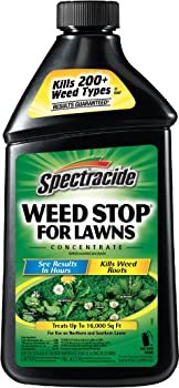 Spectracide Weed Stop for Lawns Concentrate