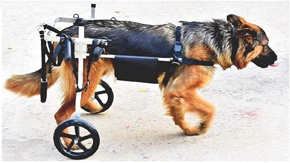 Perro grande con una silla de ruedas perro, caminante asistido personas con discapacidad, de las patas traseras de rehabilitación,XXL for 25~60kg