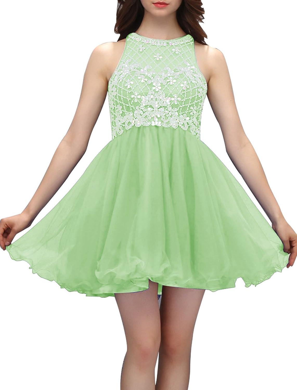 Wedtrend Damen Kurz Homecoming Kleid Tüll AbendKleid mit ...