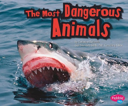 The Most Dangerous Animals (Extreme Animals)
