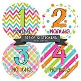 Months In Motion Monthly Baby Sticker Milestone Stickers Baby Girl Newborn Infant