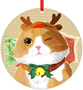 """PETCEE Cat Christmas Ornaments 2020,3"""" Cute Funny Cat Ornament for Christmas Tree Holiday Party Decorations Home Décor"""