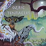 Yumyum Tree by OZRIC TENTACLES (2013-05-04)