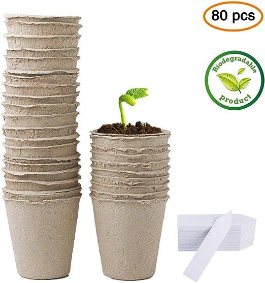 LFS Kits de Germinación con Semilleros Macetas Biodegradables y ...