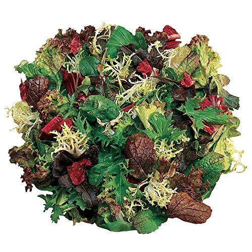 Burpee Classic Mix (Organic) Mesclun Seeds 1500 seeds