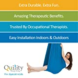 Quility Indoor Therapy Swing for Kids with