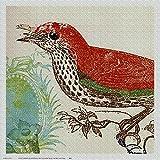 Art Needlepoint Red Bird Kit