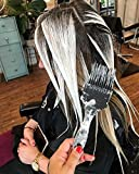 Framar Power Painter Hair Color Brush, Hair Dye
