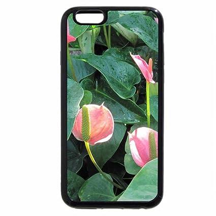 coque iphone 6 lys