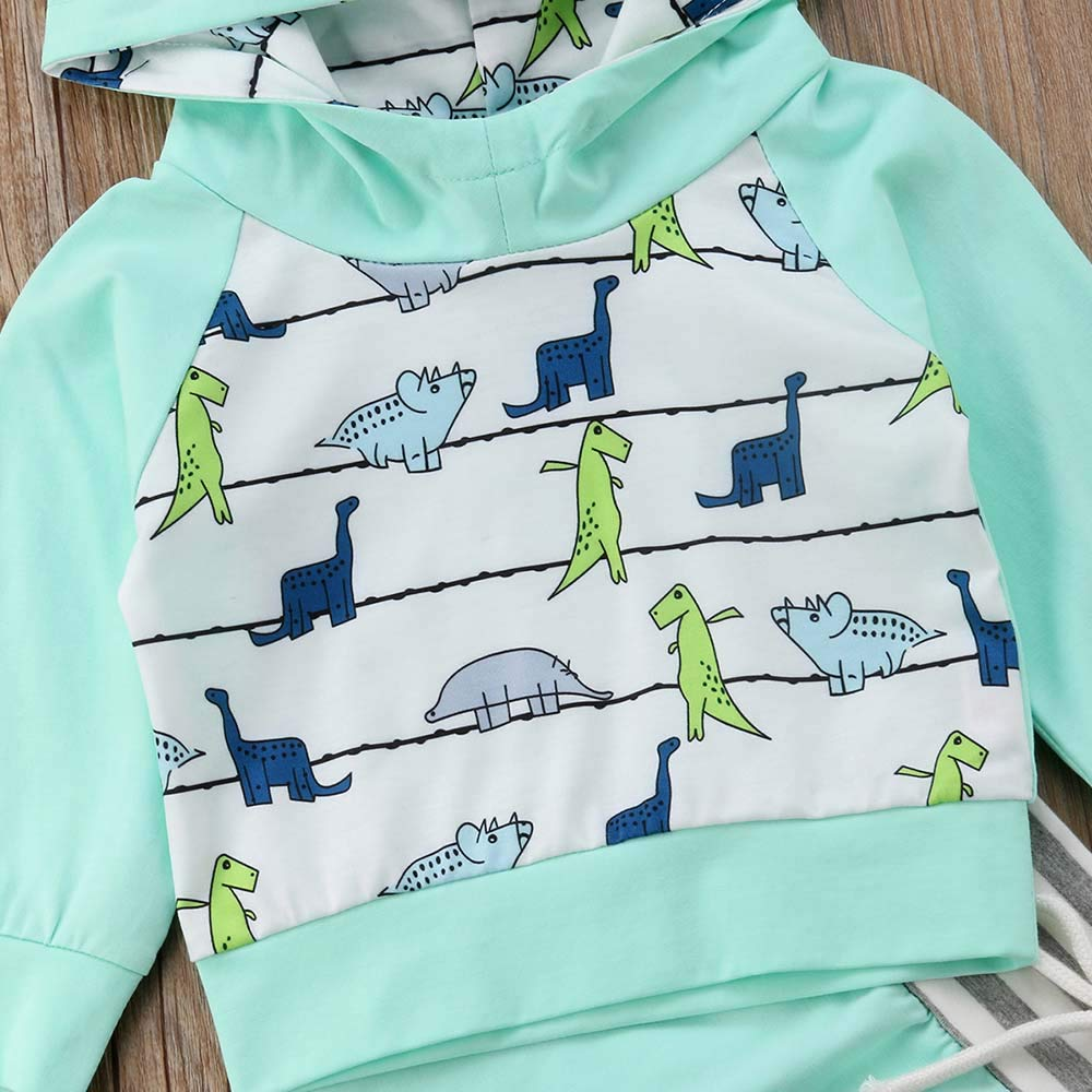 2Pcs Newborn Infant Baby Boy Girls Dinosaur Pattern Long Sleeve Hoodie Top Pants Clothing Set Fall Winter Outfit