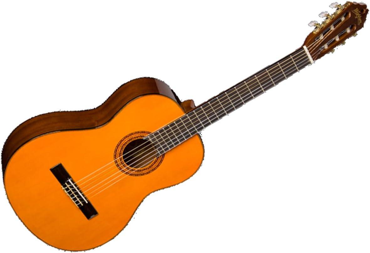 Washburn C5 – Guitarra acústica de la serie clásica material ...