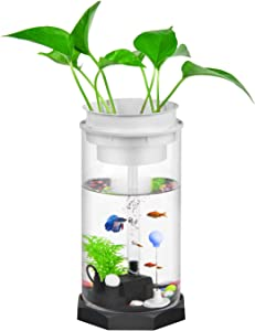 EBlife New Technology for Lighting Aquariums LED Ecological Aquarium with Light Fengshui Geomantic Ecological Fish Tank for Desk Office Table Living Room Bedroom Home Decor