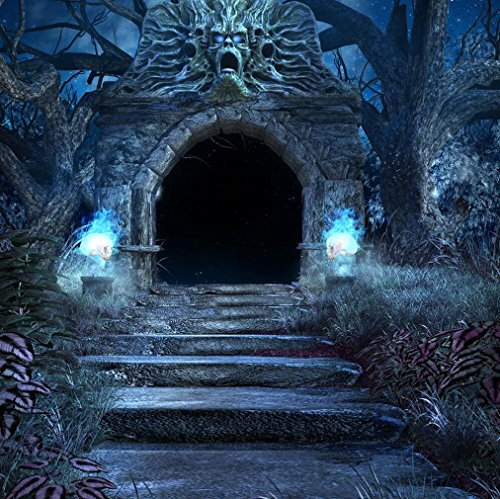 Scary Crypt Portal Backdrop Photography Stone Stairs Old Trees Halloween Night Background for Photo Studio Booth Shoot Props 10x10 ft]()