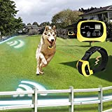 2 Dog Electric Fence with Rechargeable & Waterproof Collar, Hidden Dog Containment System with Wire-DTY2 offers