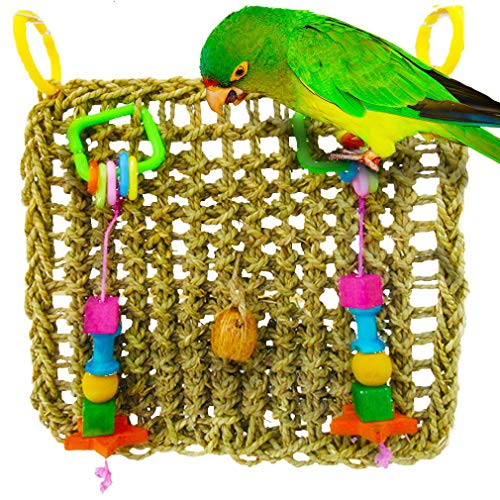 SunGrow Foraging Wall Bird Toy with Hanging Hook