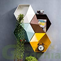 Green Gardenia GI Metal Hexagon Wall Planter/Hanging Planter