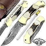 Stag Horn 7.5'' Custom Handmade Damascus Steel Folding Pocket Knife Brass Double Bloster Back Lock 100% Prime Quality