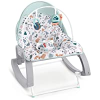 Fisher-Price Deluxe Infant-to-Toddler Rocker Seat - Pacific Pebble, Multi