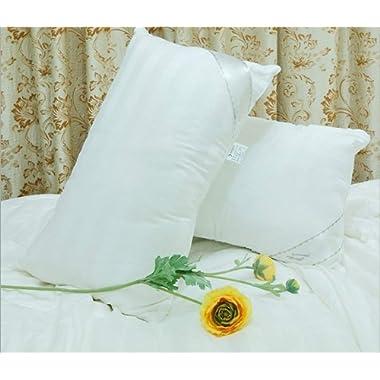Soft Silker Silk Pillows Silk Down Pillows National Standard Long Mulberry Silk Silkworm Filled(One Pack)